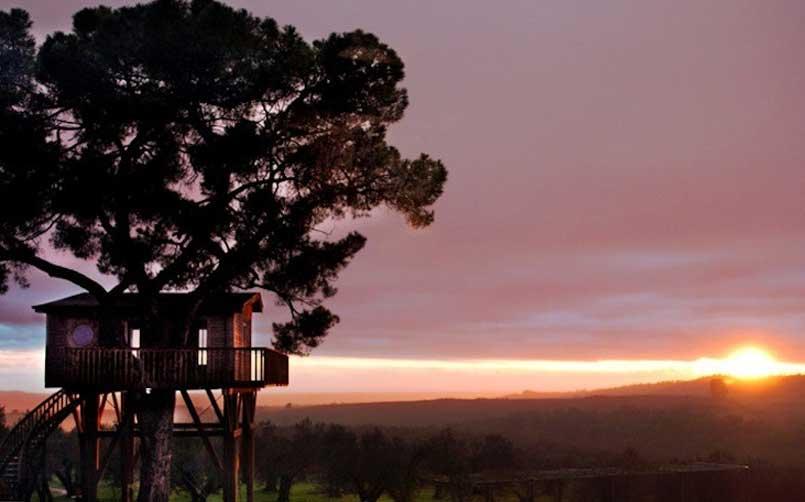 Black Cabin - Casa sull'albero