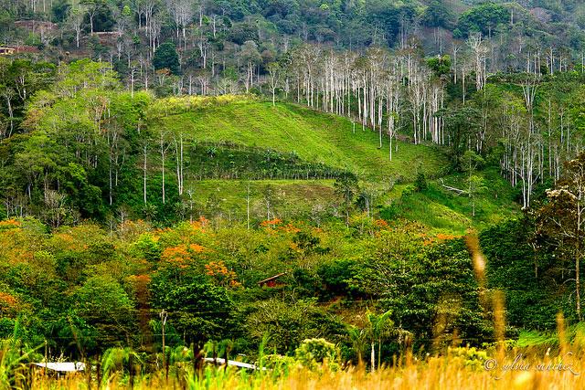 Parco Naturale Costa Rica