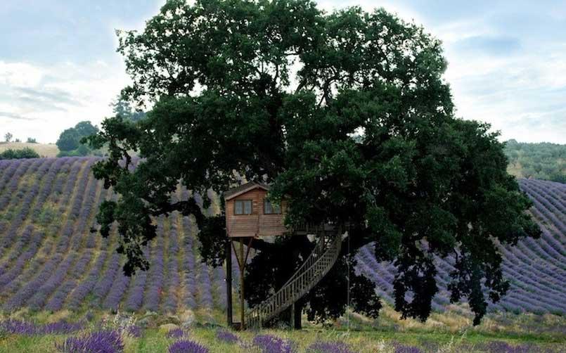 La Casa sull'Albero Suite Bleue